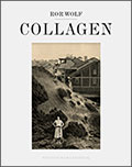 "Buchcover ""Ror Wolf: Collagen"""